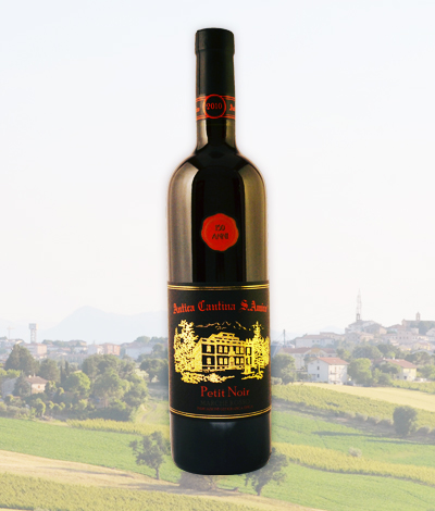 Pinot Nero IGT, Le Marche Italy